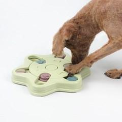 강아지 노즈워크 후각놀이 분리불안 훈련 퍼즐장난감