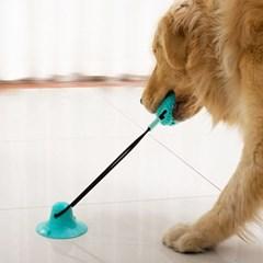 강아지 터그놀이 노즈워크 치석제거 로프장난감