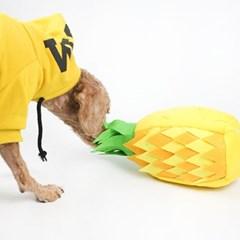강아지 장난감 노즈워크 삑삑이인형 간식놀이 골드파인