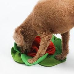 강아지 코장난감 노즈워크 스너플매트 간식찾기