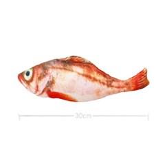 물고기 고양이 캣닢 장난감 용품 30cm (붉은동태)_(301873057)