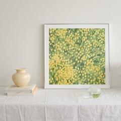 mimosa poster