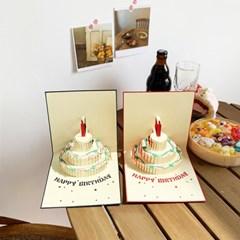 3D 입체 팝업 카드 생일 편지지 기념일 축하 카드 2종