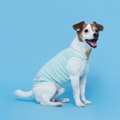 플로트 릴렉스나시 강아지옷 민트