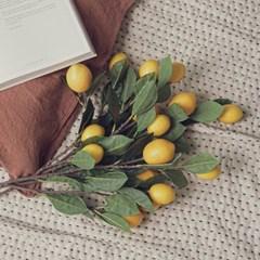 조화 레몬 트리 가지_(2693556)