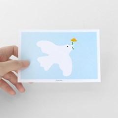 [찰리파파] 평화 엽서