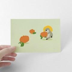 [찰리파파] 호박 엽서