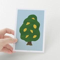 [찰리파파] 찰리나무 엽서
