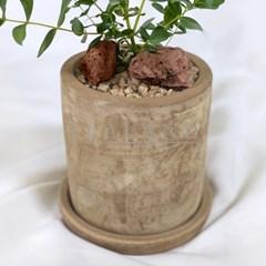 공기정화식물 유칼립투스 집들이선물 신혼집인테리어 테라코타토분