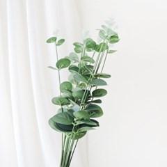 유칼립 조화 잎