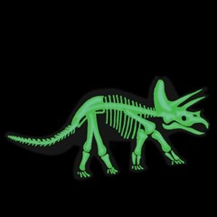 [이부] 공룡 3D 입체퍼즐 트리케라톱스 / 5세이상 야광