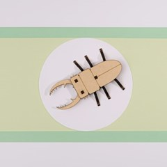 [DIY 톱사슴벌레 만들기] 엄마표 집콕놀이 취미 키트