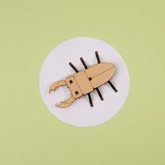 [DIY 왕사슴벌레 만들기] 엄마표 집콕놀이 취미 키트