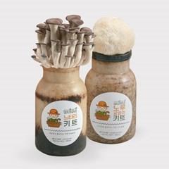 무럭무럭 느타리버섯+노루궁뎅이버섯 키우기 키트