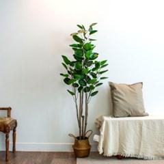 파비안 둥근잎 조화 대형 나무 160cm j