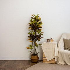 크로톤 나무 조화 대형 인조나무 j