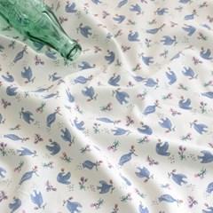 [Fabric] 프레쉬 비기닝 코튼