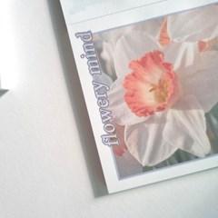 flowery mind 메모지