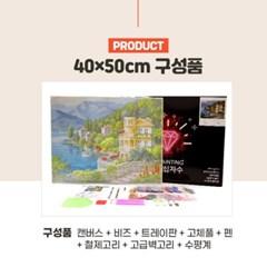 DIY 보석십자수 액자형 캔버스 인물 시리즈 40x50