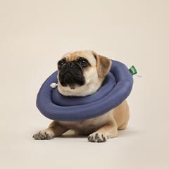 페스텝 강아지넥카라 진드기방지 UFO 넥쿠션 (핑크)