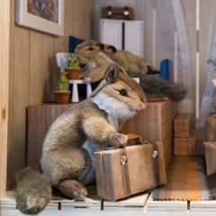 3090 다람쥐 동물인형/18x15cm