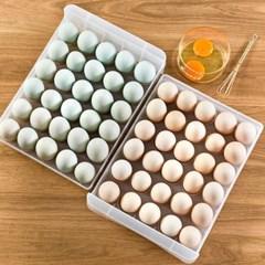 트리쿡 서랍형 계란케이스(60구)/ 달걀보관함
