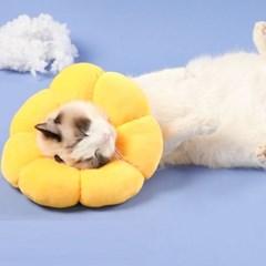 강아지 넥카라 깔대기 목보호대 고양이 쿠션 상처관리