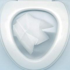 여행 필수! 휴대용 위생 변기커버 (10매입)