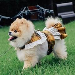 체체 옐로우 원피스, 강아지하네스