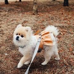 꽃분이 베이지, 철릭 한복 강아지하네스
