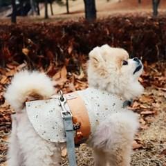 꽃도령 베이지, 한복 강아지하네스