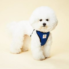 강아지하네스 이지핏 베이직하네스 L 강아지가슴줄 목줄