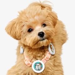 래핑찰리 이지 세이프 클립 6개 강아지 안전산책 클립