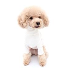 강아지 겨울옷 폴라 레이어드 골지넥 티셔츠 화이트
