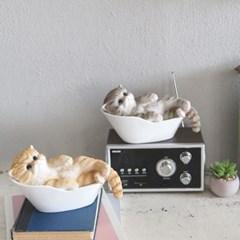 반신욕 욕조 고양이 2color 오브제 IH