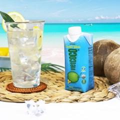 비엣코코 코코넛워터 유기농 전해질충전 운동건강음료 330ml 24팩