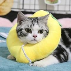고양이 강아지 쿠션 넥카라 그루밍 방지 5종 레몬