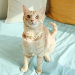 개달당 고양이 꽃 초커 목걸이 2종세트 고양이턱받이