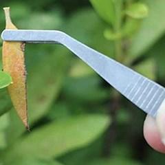 원예 화분 가꾸기 미니 12종 세트 DD-11158
