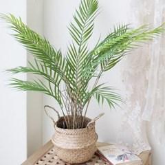 아레카 야자팜 식물화분 조화 (2size)