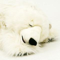 4807 잠자는 북극곰 동물인형/120cm.L