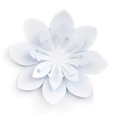 Bloom card BLANK