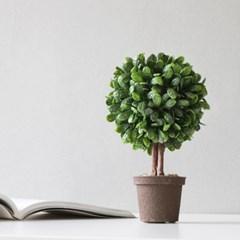 토피어리 나무