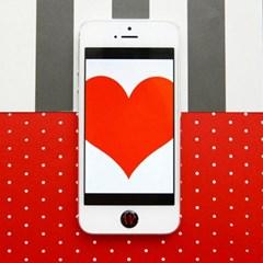 아이폰 홈 버튼