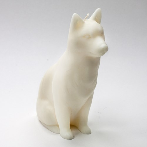 Doggy Life - 화이트 팽