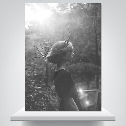 그레이 포레스트  - 감성사진 폼보드 액자