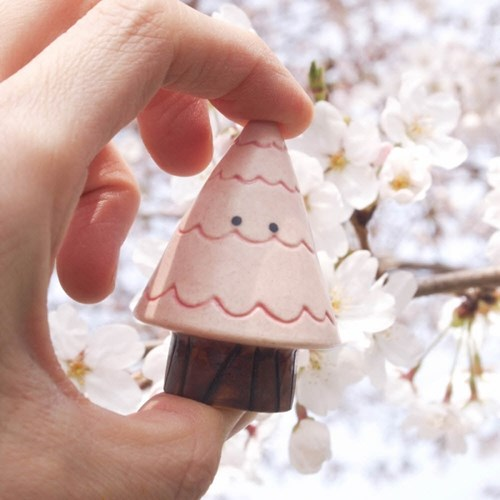 키 큰 벚꽃나무