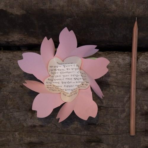 벚꽃카드 Pink