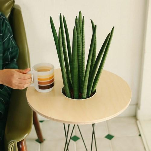 스탠드 화분 테이블 [Stand Pot Table]