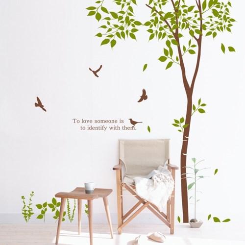 dc109-숲속의 자작나무1